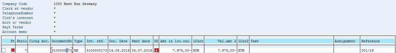 SAP Vendor Open Items – Before Manual Payment