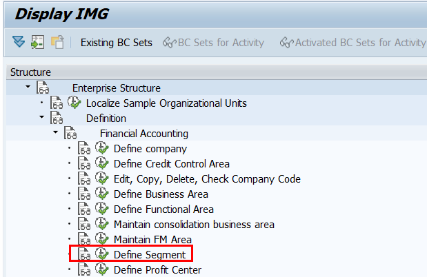 Define segment in SAP