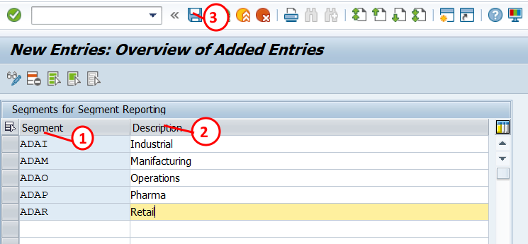 Define segments in SAP