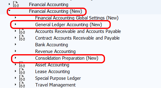 Financial Accounting new in SAP
