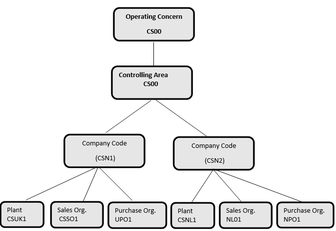 Organizational Structure for Comserve Network